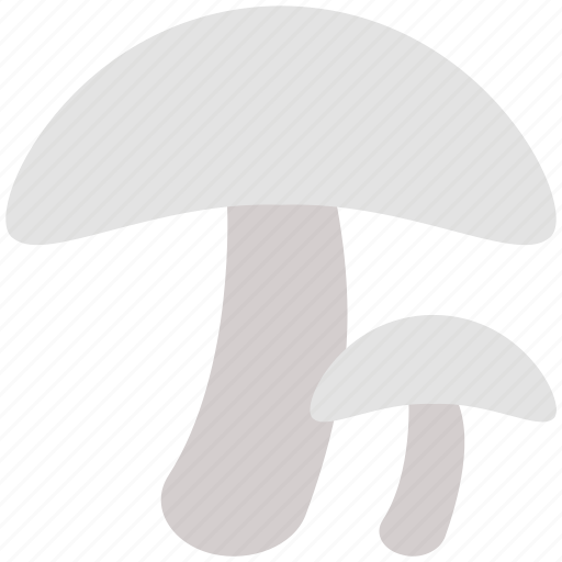 food, fungi, fungus, mushroom, oyster mushroom, vegetable icon