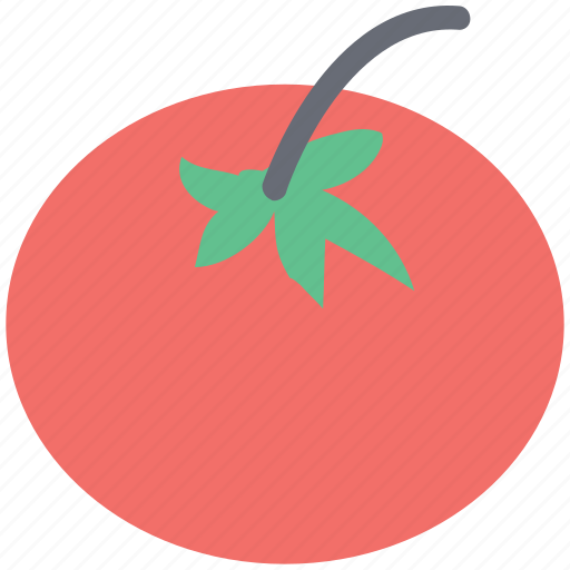 eaten vegetable, edible fruit, fresh tomato, salad, tomato icon