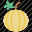 cantaloupe melon, food, fresh, fruit, melon