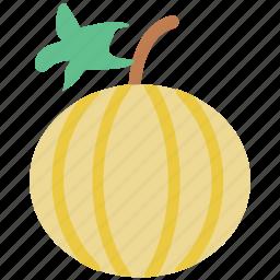 cantaloupe melon, food, fresh, fruit, melon icon
