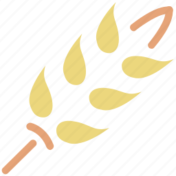 durum wheat, ear of wheat, wheat, wheat bundle, wheat ear, wheat grass icon