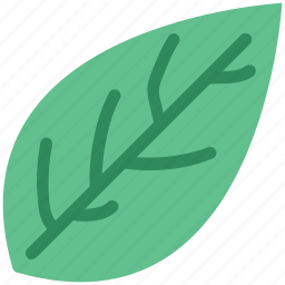 green, green leaf, green leafage, leaf, leafage, nature icon