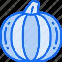 eating, food, fruit, health, pumpkin icon