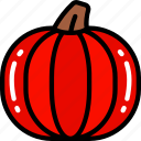 eating, food, fruit, health, pumpkin icon