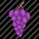 fruit, grape, food, healthy