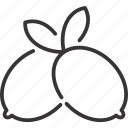 fruit, leaf, lemon, line icon