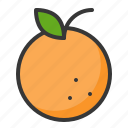 food, fruit, fruits, healthy, orange icon