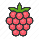 food, fruit, fruits, healthy, raspberry icon
