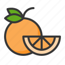 food, fruit, fruits, healthy, orange, orange slice, slice icon