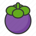 food, fruit, fruits, mangosteen, purple mangosteen icon