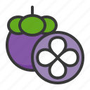 food, fruit, fruits, half mangosteen, healthy, mangosteen icon