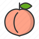 food, fruit, fruits, healthy, peach icon