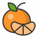 food, fruit, fruits, healthy, orange, tangerine icon