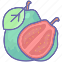 food, fruit, guava, megan icon