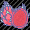 dragon fruit, food, fruit, fruits icon
