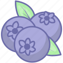 blueberries, blueberry, food, fruit icon