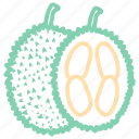 durian, food, fruit, fruits, lychee icon