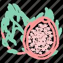 food, fruit, fruits, pitaya icon