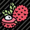 asia, fruit, lichi, lychee, tropical icon