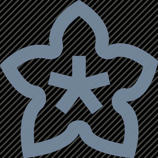 carambola, food, fruits, natural, star, starfruit icon