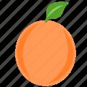 citrus, eat, food, fruit, meal, orange, orange juice icon