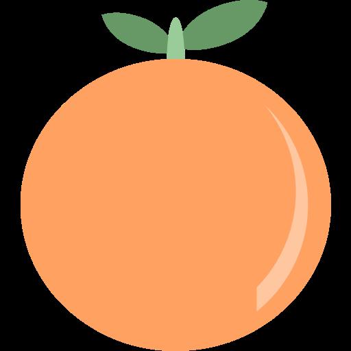 Fruit, orange icon - Free download on Iconfinder