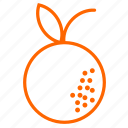 citrus, fruit, orange, tangerin, vitamins icon