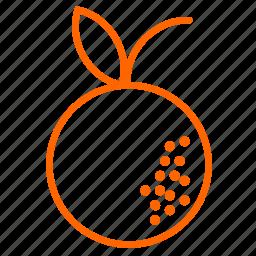 citrus, fruit, orange, tangerin, vitamins icon