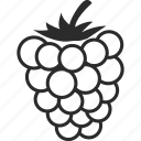 blackberry, food, fruit, graps, wine icon
