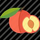 apple, food, fruits, sheet icon