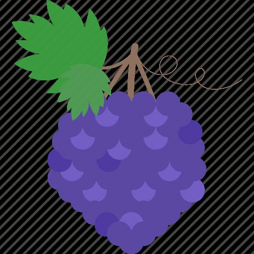 blackberry, food, fruits, sweet icon