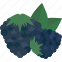 blueberry, food, fruits, sheet, sweet icon