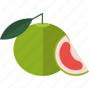 citrus, food, fruits, sheet icon