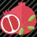 food, fruits, garnet, lobule icon