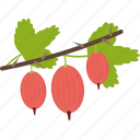 food, fruits, goostberry, sheet icon