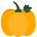 food, fruits, gourd, melon icon