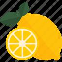 food, fruits, lemo, sheet icon