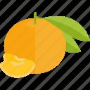 food, fruits, lobule, mandarin, sheet icon