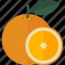 food, fruits, lobule, orange icon