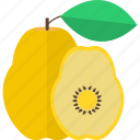food, fruits, pear, sweet icon