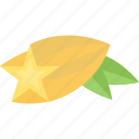 food, fruits, sheet, star icon