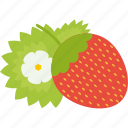 food, fruits, strawberry, sweet icon