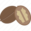 food, fruits, nut, tree icon