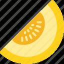 food, fruit, fruits, melon icon