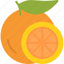 food, fruit, orange, slicefruits icon