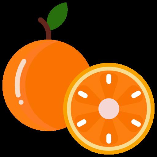 food, fruit, fruits, orange icon