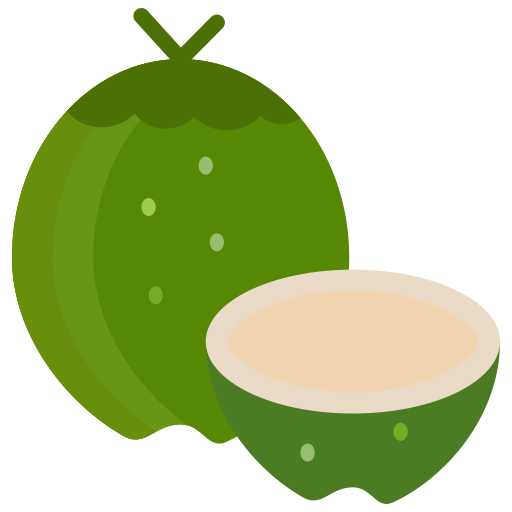 Coconut, food, fruit, fruits, summer icon - Free download