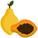 food, fruit, fruits, papaya icon