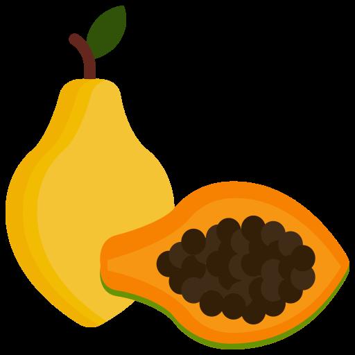 Food, fruit, fruits, papaya icon - Free download