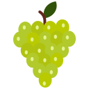 food, fruit, fruits, grapes, green grapes icon
